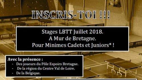 Stages ete a mur de bretagne ligue de bretagne de tennis de table - Ligue de bretagne de tennis de table ...