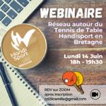 Webinaire Tennis de Table Handisport Bretagne